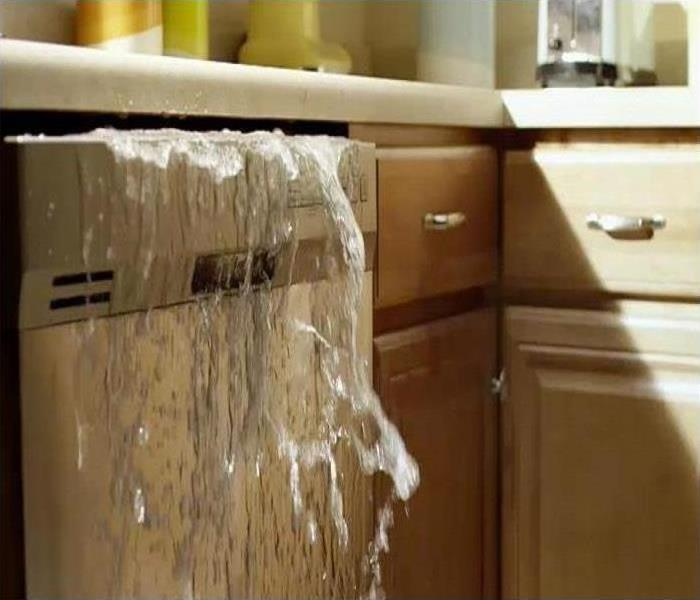 Photos shows a dishwasher with water gushing out of it.
