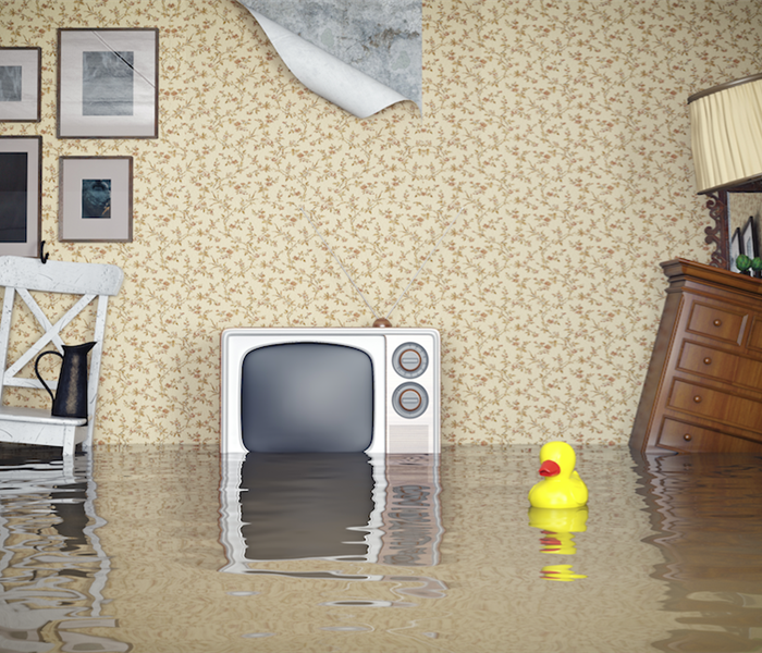 Water Damage Water Damage: A Safety Hazard in Your Pineville Home